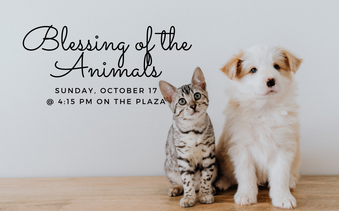 Blessing of the Animals – October 17, 2021